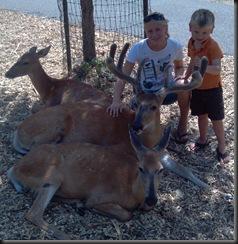 WI Dells_Deer Park_kids