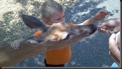 WI Dells_Deer Park_Michael