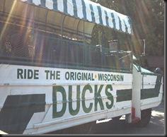 WI Dells_ Ducks