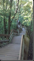 Dunes_stairs down_8-11-12