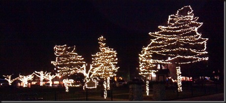Christmas Lights_grainery_11-28-12