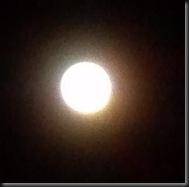 Full Moon_11-28-12