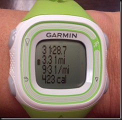 Garmin_green_run stats