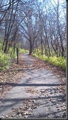 Kankakee River State Pk_11-11-12