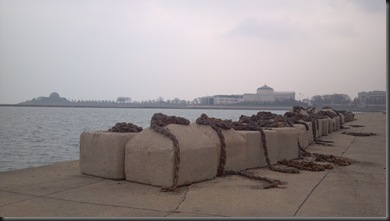 Lakefront2_11-20-12