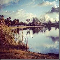 Ragnar Keys_tranquility pond