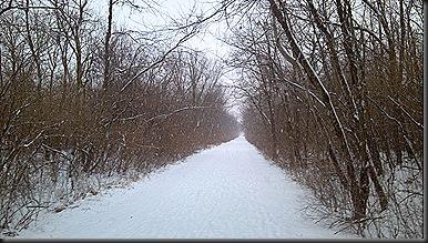 Snow OPT_2-3-13