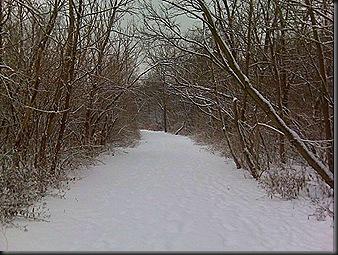 Snow_me_Jan 2009