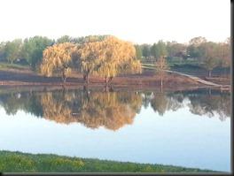 McCarthy Park Lagoon