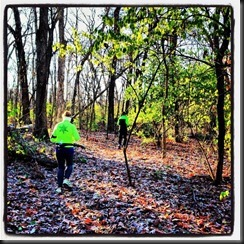 Kankakee River State Pk_ woods_Nov 2013
