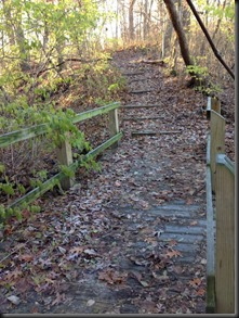 Kankakee River State Pk_bridge & stairs_Nov 2013
