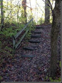Kankakee River State Pk_stairs_Nov 2013