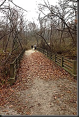 Swallow Cliff_Nov 2013_bridge