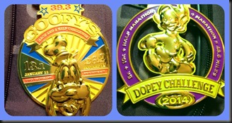 Goofy & Dopey medals