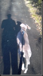Libby_on the run_11-11-12