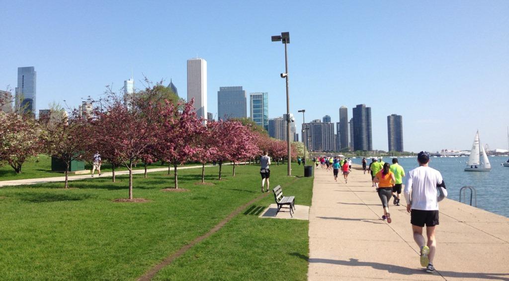Resultado de imagen de CHICAGO SPRING