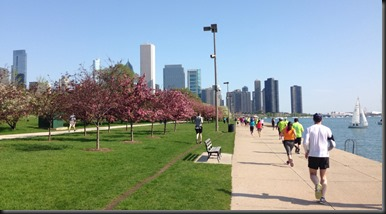 Chicago Spring half_views3