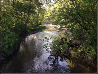Hickory Creek_June 2014_stream