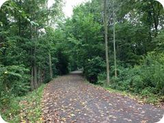 Auburn Trail