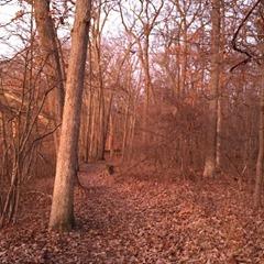 trail 1_start